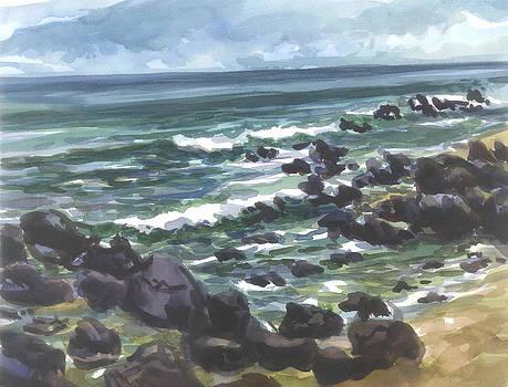 Hawaii-Oahu North Shore by Ron Libbrecht