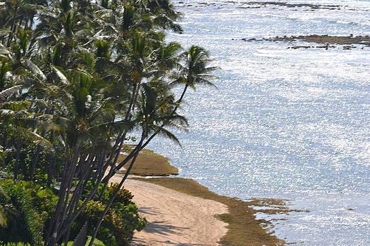 Hawaii Shores by Amanda Eberly-Kudamik