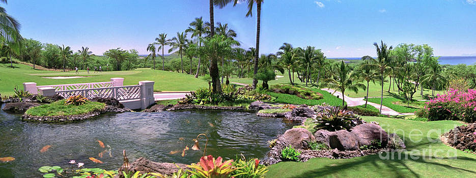 David Zanzinger - Hawaii Wailea Gold Course Golf Course Panorama