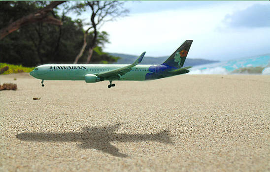 Marcello Cicchini - Hawaiian Airlines