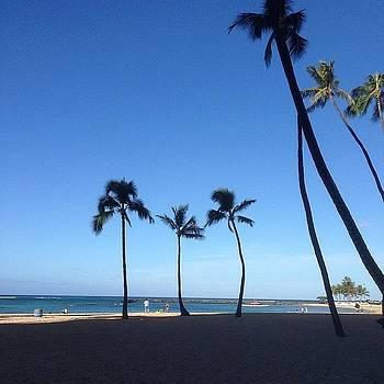 Hawaiian Beaches by Dan Mason