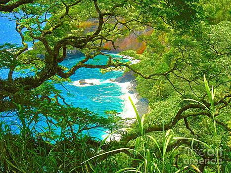 Hawaiian Beauty by Tina Hannaford