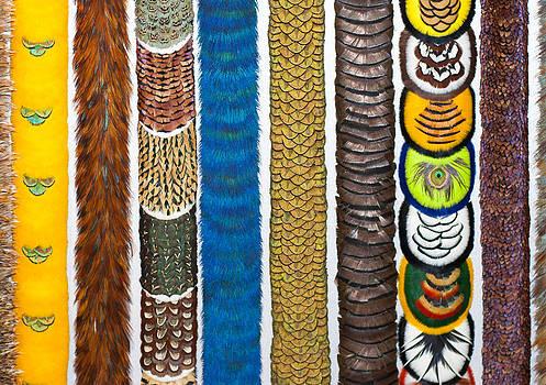 Ramunas Bruzas - Hawaiian Colors