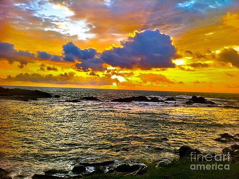 Hawaiian glow by Tina Hannaford
