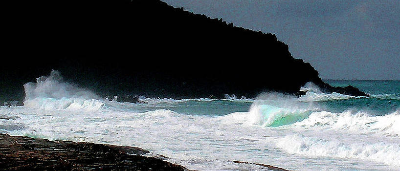 James Temple - Hawaiian Heiau