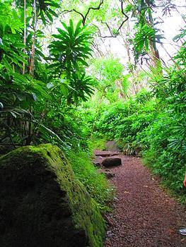 Hawaiian Jungle Manoa by Elaine Haakenson