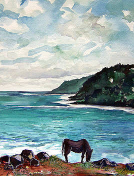 Hawaiian Nag by Jon Shepodd
