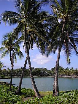 Hawaiian Paradise by Crystal Miller