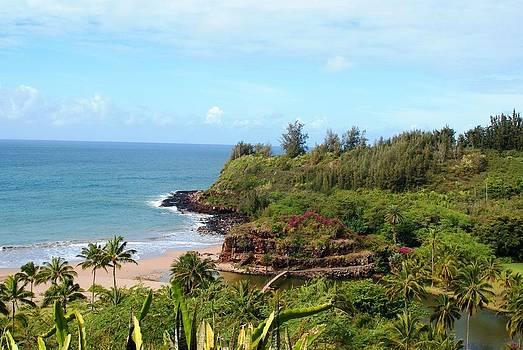 Patricia Twardzik - Hawaiian Garden Paradise