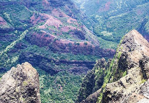 Ramunas Bruzas - Hawaiian Paradise
