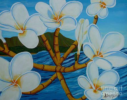 Hawaiian Plumeria by Anthony Dunphy