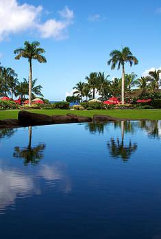 Hawaiian Reflection by Ivan SABO