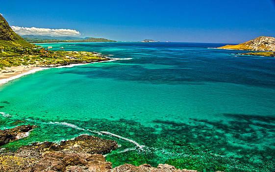 Hawaiian Water by Michael Misciagno