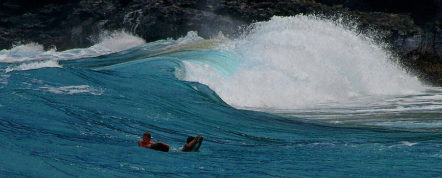 Hawaiian Wave by Christine Burdine