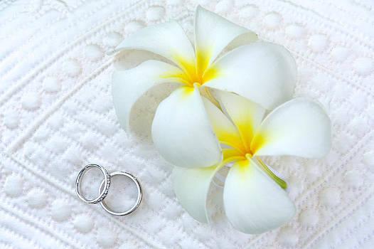 Hawaiian wedding by Ivan SABO