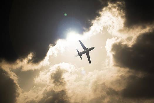 Hawk Sunset by Paul Job