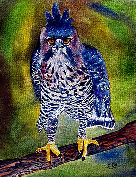 Susan Duxter - Hawk