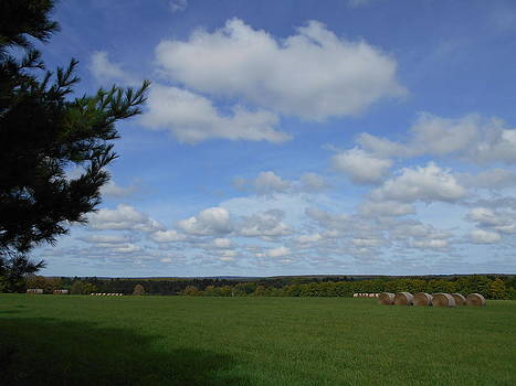 Hay and Heaven 2 by Alan Kurtz