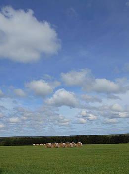Hay and Heaven by Alan Kurtz