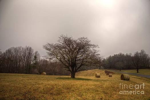 Hay Bails Among The Blue Ridge Parkway by Robert Loe