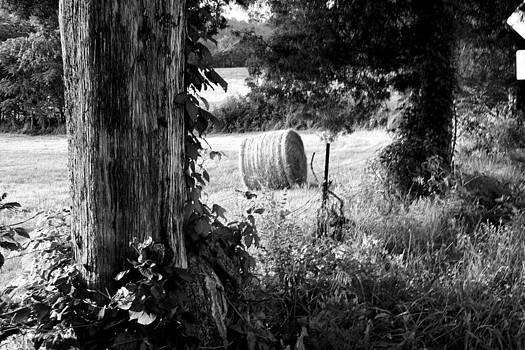 Anne Barkley - Hay Bale Black and White