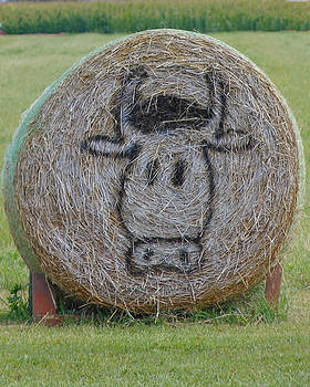 Hay Bale  by Chanda Yoder