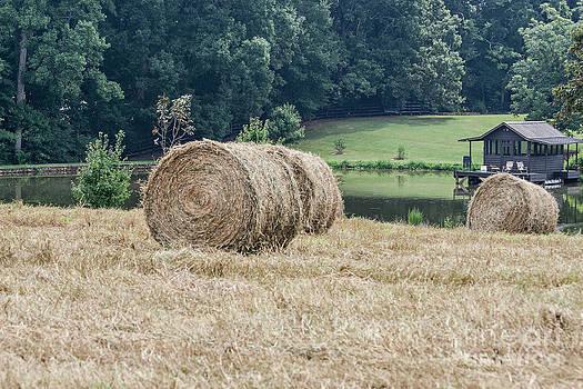 Hay Bales 2 by Jinx Farmer