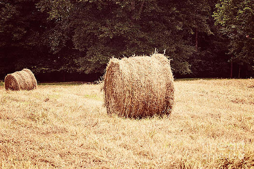 Hay Bales 3 by Jinx Farmer