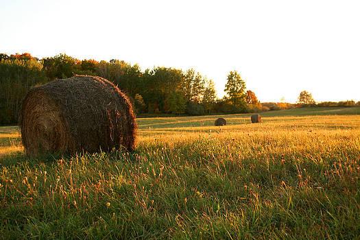 Hay Bales at Sunset by Sarah Yost