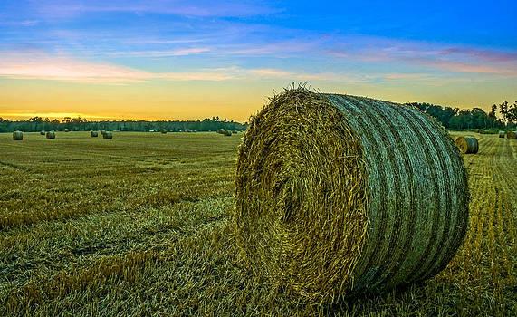 Hay Bales before Dusk by Alex Weinstein