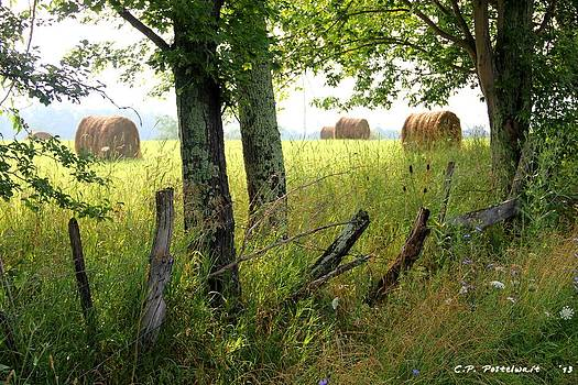 Hay Bales by Carolyn Postelwait
