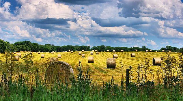 Hay Bales by Virginia Folkman