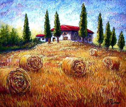 Hay Fields  by Sebastian Pierre