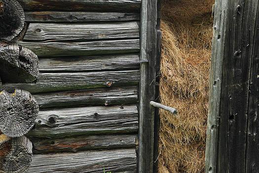 Susan Rovira - Hay for Winter
