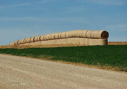 Joy Bradley - Hay Harvest