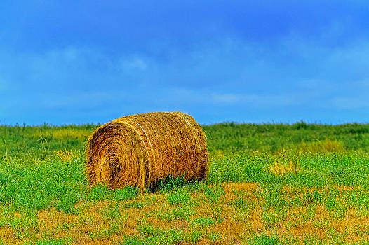 Hay by Jim Boardman