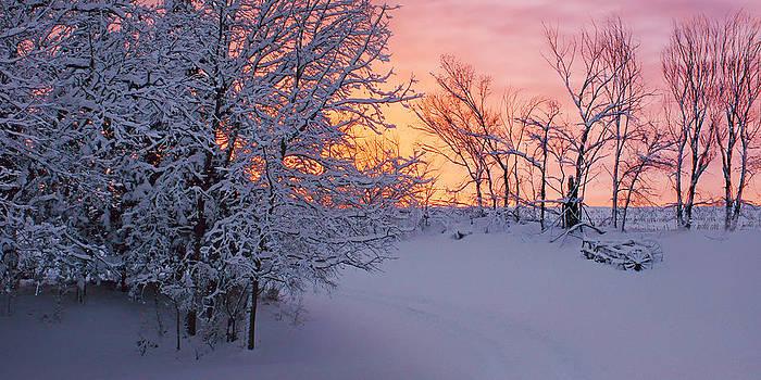 Nikolyn McDonald - Hayrake and Trees - Winter Sunset #2