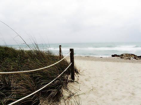 Julie Palencia - Hazy Beach Day