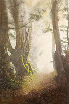 Hazy Fall Forest Light by Angela Stanton