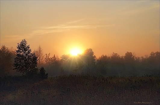 Hazy Sunrise by Daniel Behm
