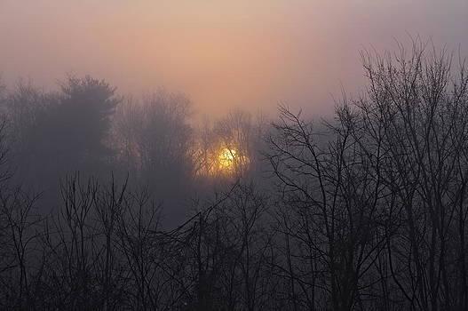Hazy Sunrise by Thomas DiVittis