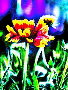 Hd Flower by Fred L Gardner