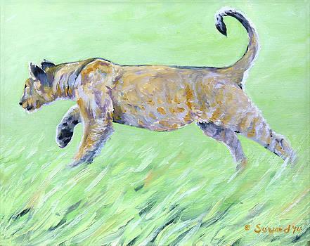 He Hunts by Sarah Soward