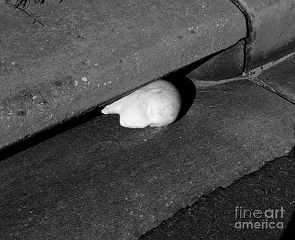 Craig Pearson - Head in the gutter