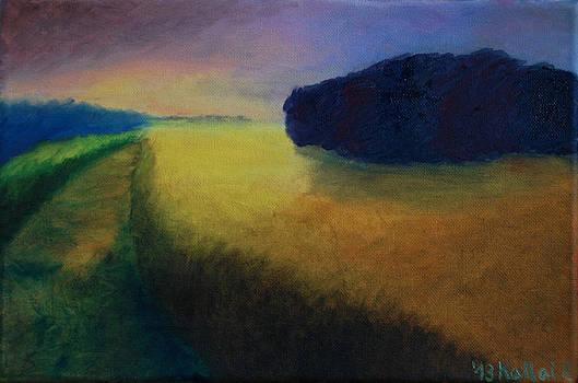 Peter Kallai - Heading home