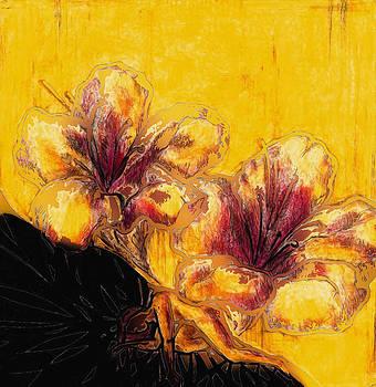 Healing Mary Ann by Andrea Carroll