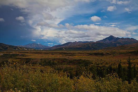 Healy Alaska by Chris Heitstuman
