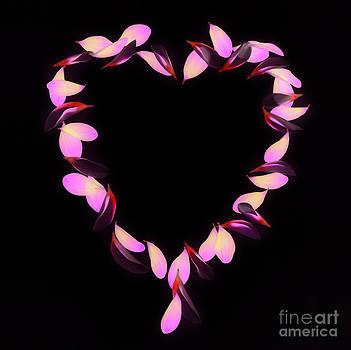 Heart full of love by Rosemary Calvert