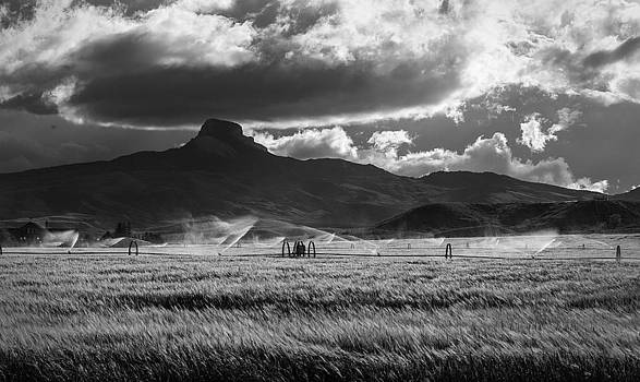 Heart Mountain 3 by Stephanie Thomson
