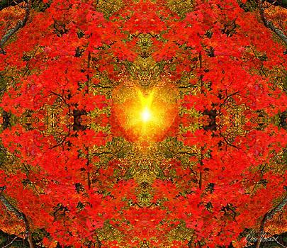 Diana Haronis - Heart of Autumn